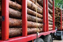 After logging the wood has to be transported from the forest to the saw mill or plant. Timber logistics deals with the wood supply chain, the transport and information exchange.